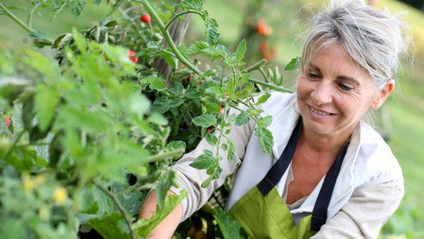 Seniorin im Garten - ASB Hausnotruf - Notrufsystem für zu Hause und mobiler Notruf